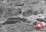 Image of American infantry wading through water Korea, 1953, second 25 stock footage video 65675061714