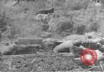 Image of American infantry wading through water Korea, 1953, second 27 stock footage video 65675061714