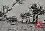 Image of 14-inch disappearing rifle at Ft. DeRussy Hawaii USA, 1941, second 19 stock footage video 65675061752