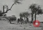 Image of 14-inch disappearing rifle at Ft. DeRussy Hawaii USA, 1941, second 25 stock footage video 65675061752