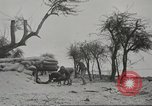 Image of 14-inch disappearing rifle at Ft. DeRussy Hawaii USA, 1941, second 26 stock footage video 65675061752