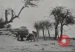 Image of 14-inch disappearing rifle at Ft. DeRussy Hawaii USA, 1941, second 27 stock footage video 65675061752