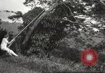 Image of aerial view Hawaii USA, 1941, second 40 stock footage video 65675061753