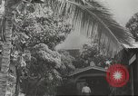 Image of attack on Pearl Harbor Pearl Harbor Hawaii USA, 1941, second 19 stock footage video 65675061769