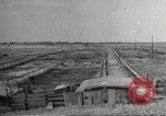 Image of Southwest Texas damage from drought Texas United States USA, 1967, second 40 stock footage video 65675061793