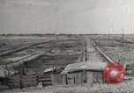 Image of Southwest Texas damage from drought Texas United States USA, 1967, second 41 stock footage video 65675061793