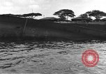 Image of Pearl Harbor attack Pearl Harbor Hawaii USA, 1941, second 41 stock footage video 65675061817