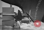 Image of US munitions factory World War 2 United States USA, 1942, second 36 stock footage video 65675061833