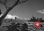 Image of Defensive training exercise Pearl Harbor Hawaii USA, 1941, second 59 stock footage video 65675061835