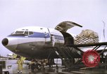 Image of Contract airlines Tan Son Nhut Vietnam, 1967, second 56 stock footage video 65675061937