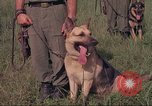 Image of 88th Military Police Corps Vietnam, 1965, second 41 stock footage video 65675061959