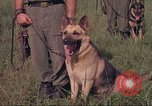 Image of 88th Military Police Corps Vietnam, 1965, second 44 stock footage video 65675061959