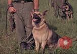 Image of 88th Military Police Corps Vietnam, 1965, second 46 stock footage video 65675061959