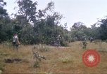 Image of 1st Infantry Division Vietnam, 1965, second 29 stock footage video 65675061978
