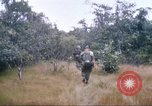 Image of 1st Infantry Division Vietnam, 1965, second 37 stock footage video 65675061978