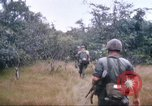 Image of 1st Infantry Division Vietnam, 1965, second 39 stock footage video 65675061978