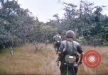 Image of 1st Infantry Division Vietnam, 1965, second 40 stock footage video 65675061978