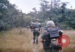 Image of 1st Infantry Division Vietnam, 1965, second 44 stock footage video 65675061978