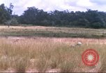 Image of 1st Infantry Division Vietnam, 1965, second 20 stock footage video 65675061979