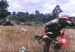 Image of 1st Infantry Division Vietnam, 1965, second 39 stock footage video 65675061979
