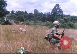 Image of 1st Infantry Division Vietnam, 1965, second 41 stock footage video 65675061979
