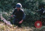 Image of 1st Infantry Division Vietnam, 1965, second 35 stock footage video 65675061980