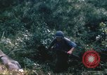 Image of 1st Infantry Division Vietnam, 1965, second 39 stock footage video 65675061980