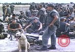 Image of scout dogs Vietnam, 1966, second 3 stock footage video 65675062005