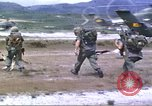 Image of scout dogs Vietnam, 1966, second 13 stock footage video 65675062005