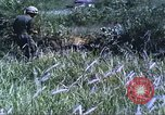 Image of scout dogs Vietnam, 1966, second 29 stock footage video 65675062005