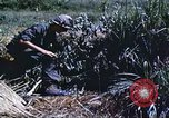 Image of scout dogs Vietnam, 1966, second 36 stock footage video 65675062005
