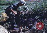 Image of scout dogs Vietnam, 1966, second 38 stock footage video 65675062005