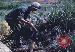 Image of scout dogs Vietnam, 1966, second 39 stock footage video 65675062005