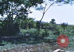 Image of scout dogs Vietnam, 1966, second 45 stock footage video 65675062005