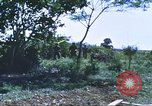 Image of scout dogs Vietnam, 1966, second 46 stock footage video 65675062005