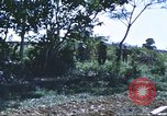 Image of scout dogs Vietnam, 1966, second 50 stock footage video 65675062005