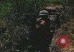 Image of scout dogs Vietnam, 1966, second 60 stock footage video 65675062005