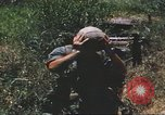 Image of scout dogs Vietnam, 1966, second 62 stock footage video 65675062005