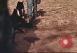 Image of sentry dogs South Vietnam, 1967, second 10 stock footage video 65675062006