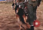 Image of sentry dogs South Vietnam, 1967, second 13 stock footage video 65675062006