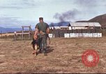 Image of sentry dogs South Vietnam, 1967, second 18 stock footage video 65675062006