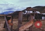 Image of sentry dogs South Vietnam, 1967, second 49 stock footage video 65675062006