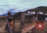 Image of sentry dogs South Vietnam, 1967, second 52 stock footage video 65675062006