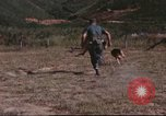 Image of sentry dogs South Vietnam, 1967, second 61 stock footage video 65675062006