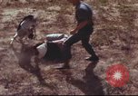 Image of sentry dogs South Vietnam, 1967, second 19 stock footage video 65675062007