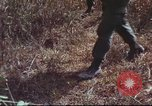 Image of sentry dogs South Vietnam, 1967, second 33 stock footage video 65675062007