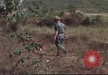 Image of sentry dogs South Vietnam, 1967, second 42 stock footage video 65675062007