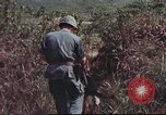 Image of sentry dogs South Vietnam, 1967, second 46 stock footage video 65675062007