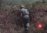 Image of sentry dogs South Vietnam, 1967, second 48 stock footage video 65675062007