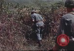 Image of sentry dogs South Vietnam, 1967, second 49 stock footage video 65675062007